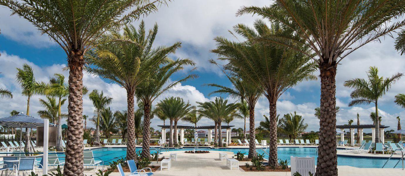 Sarasota National Swimming Pool