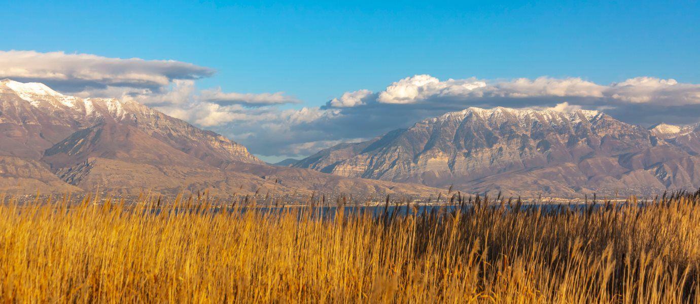Local Mountain Range