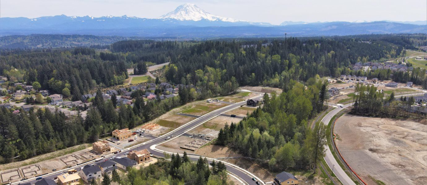 An aerial view of the community with several pine trees and homes with a snow covered mountain top i