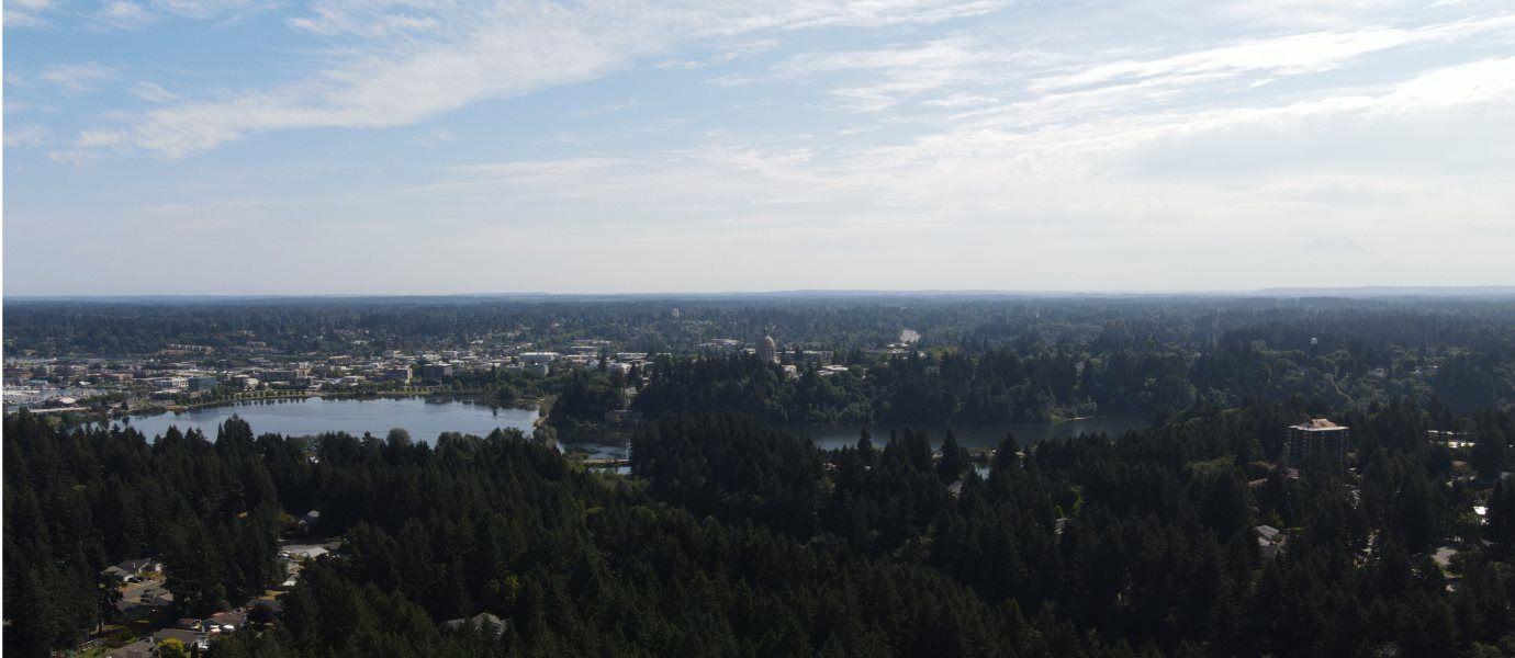 Wellington Heights View