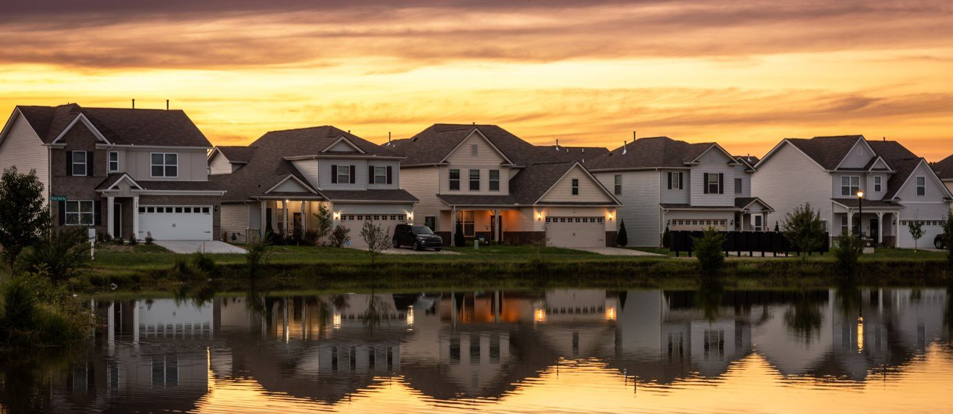 Vineyard Grove Classic Collection as the Sun Sets