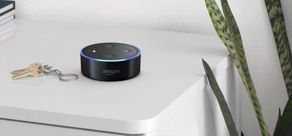 Amazon Alexa Included