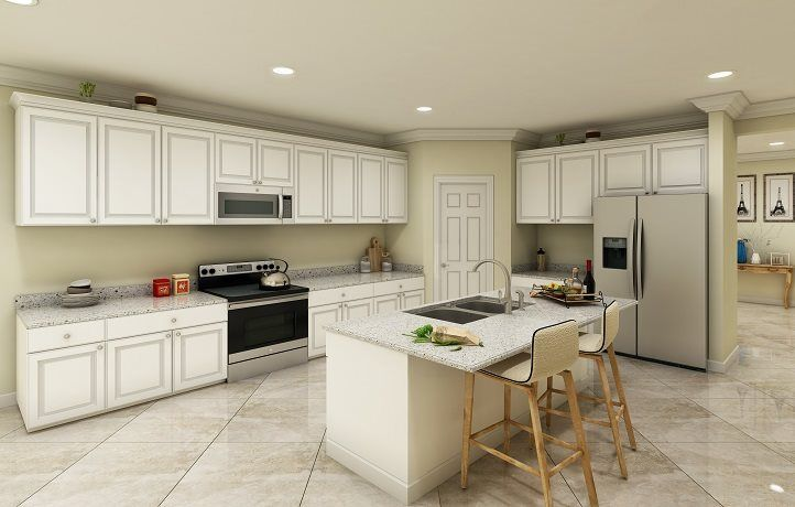 Washingtonia kitchen