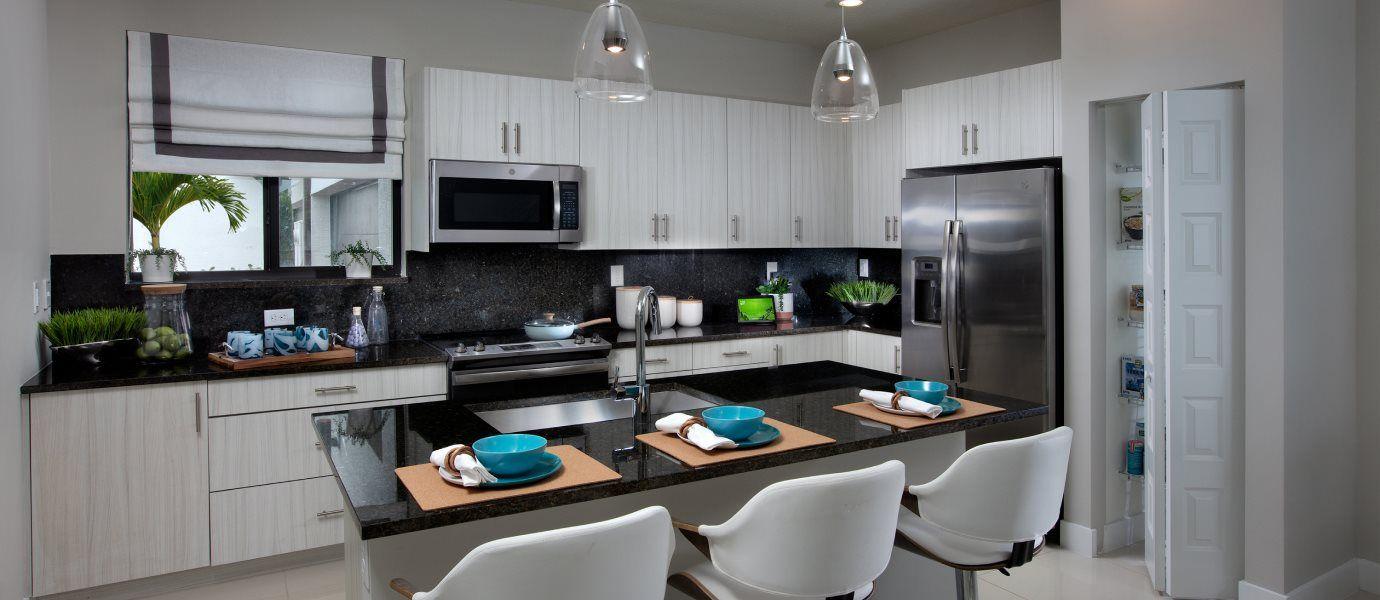 Urbana 2-Story Townhomes Model CE Skyview Kitchen