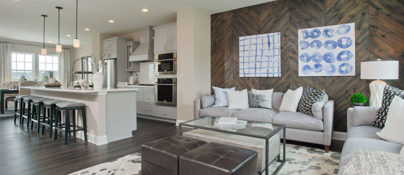 Delacour at Blue Stream Townhome Collection Arcadi