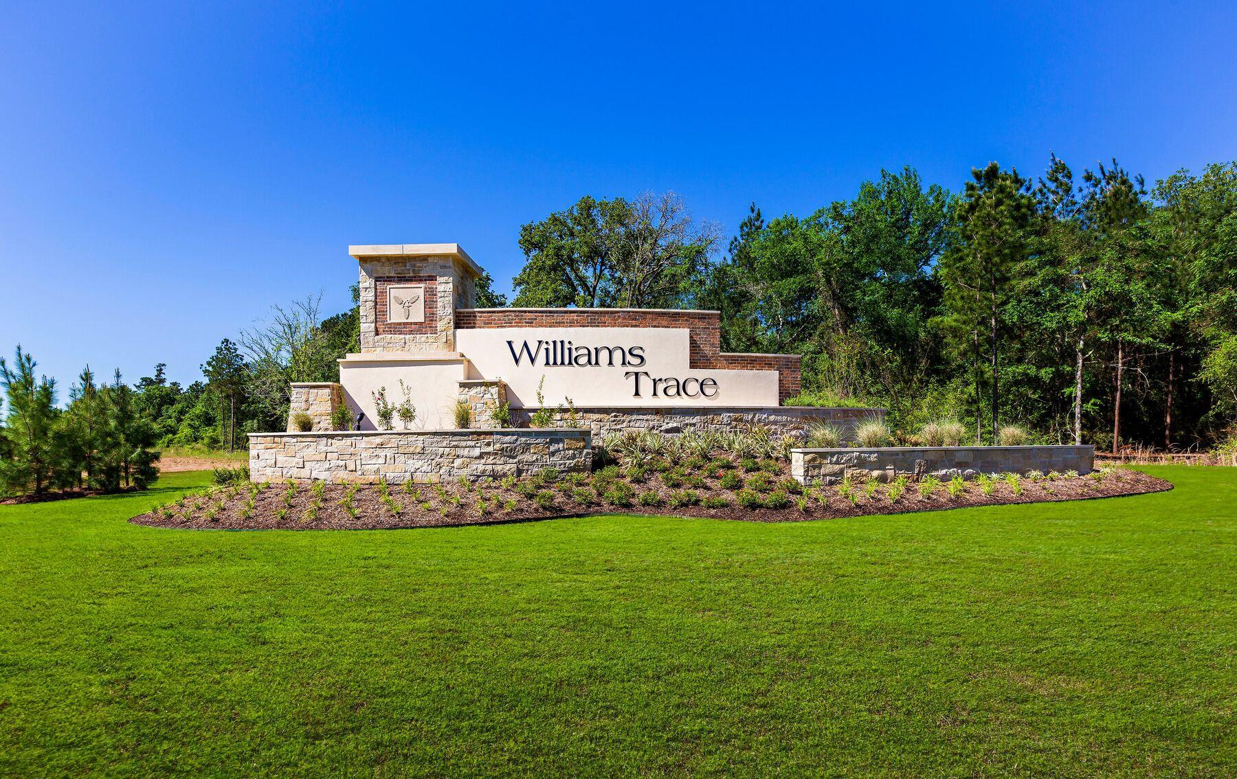 LGI Homes at Williams Trace:Williams Trace is located minutes from world-class shopping, dining and entertainment!