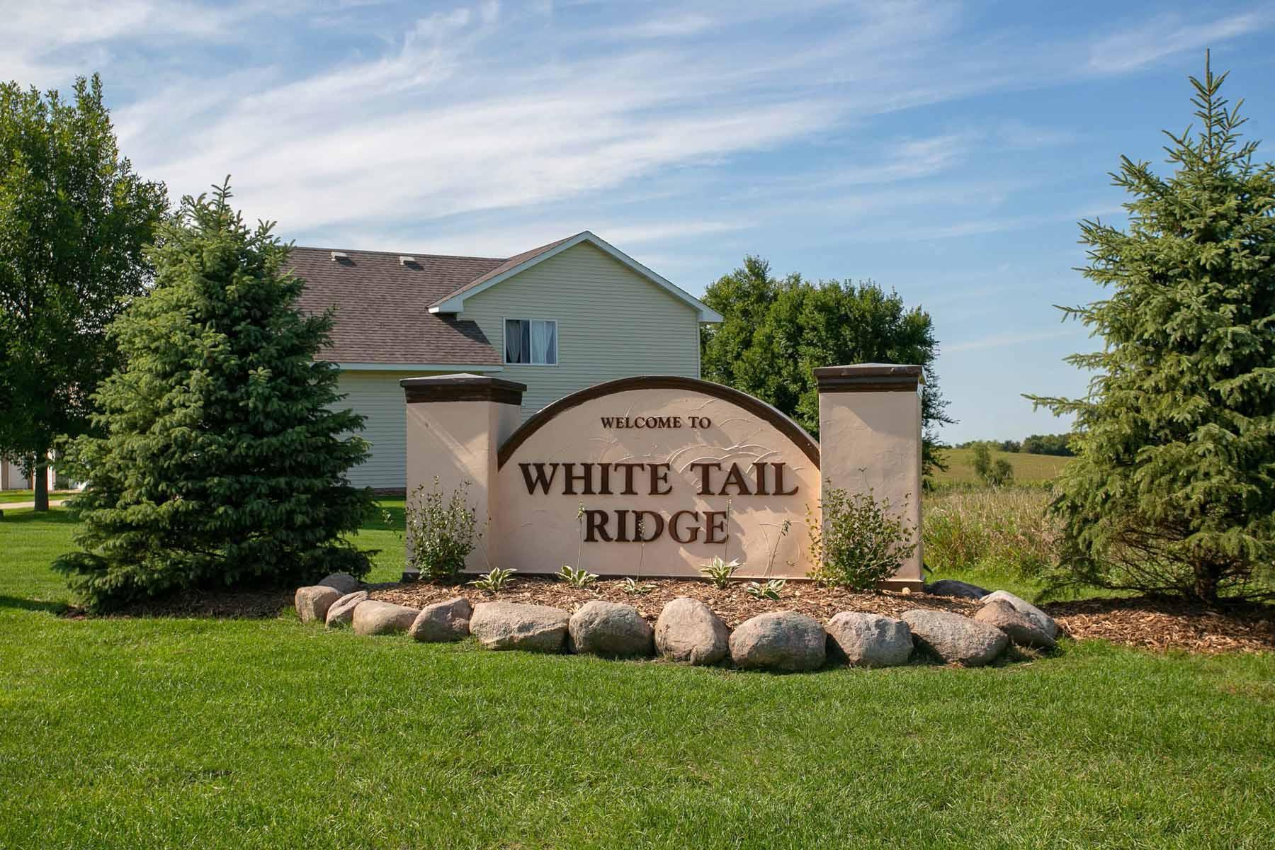 LGI Homes at White Tail Ridge:LGI Homes at White Tail Ridge