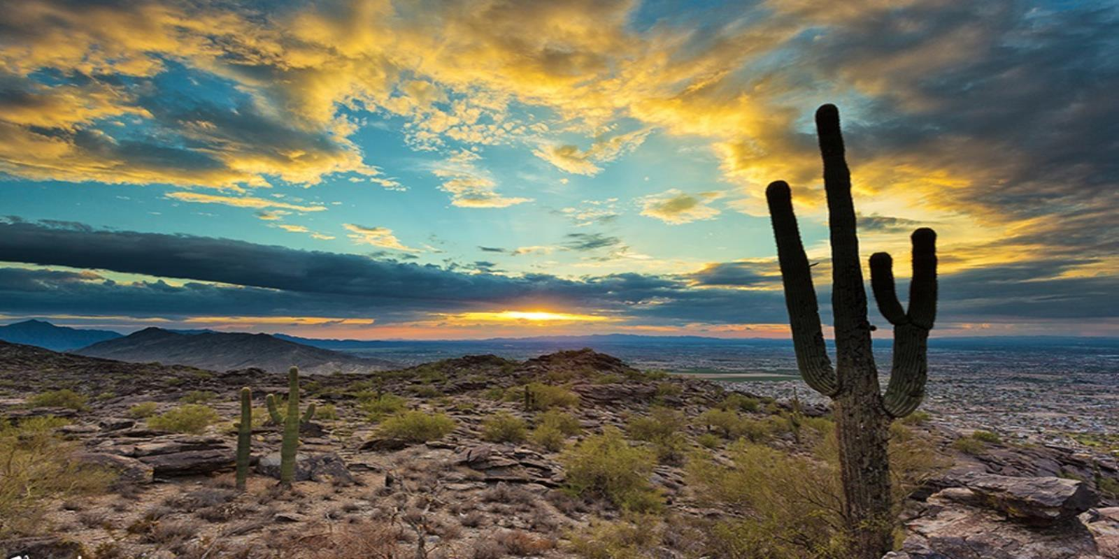 Chandler - Retreats at Haven:Haven   Desert Image