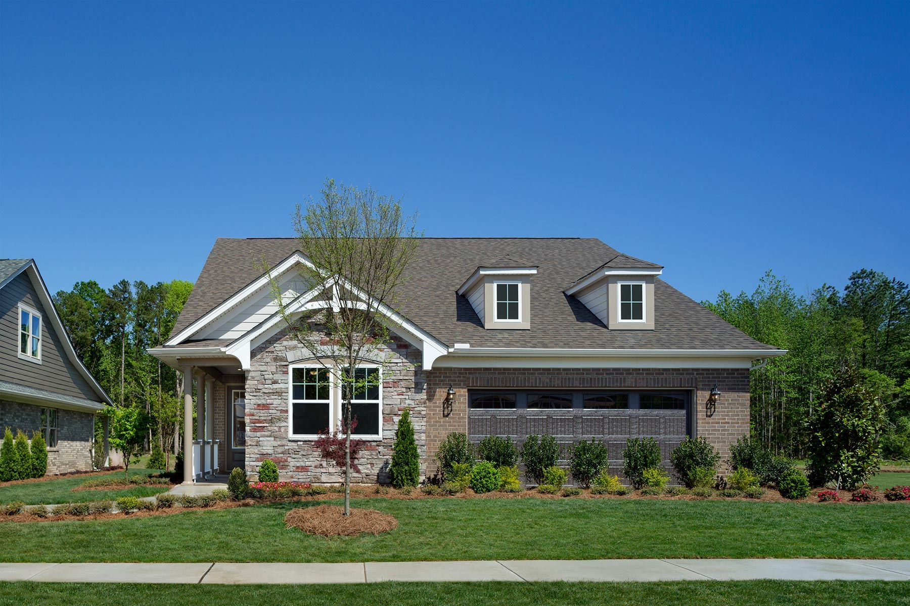Mint Hill - Sonata at Mint Hill:Armstrong Model French Country Elevation