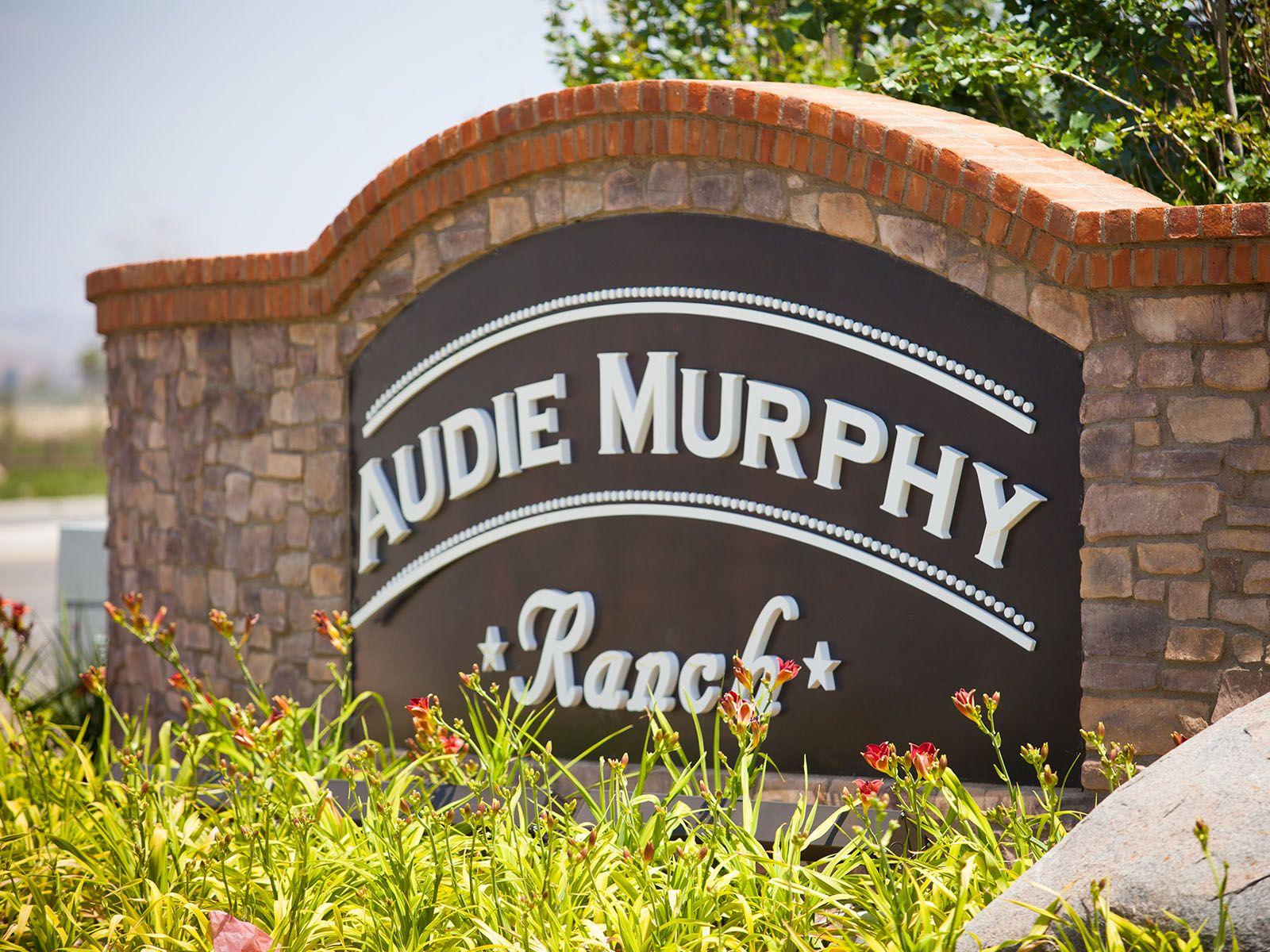 Jasper at Audie Murphy Ranch,92584