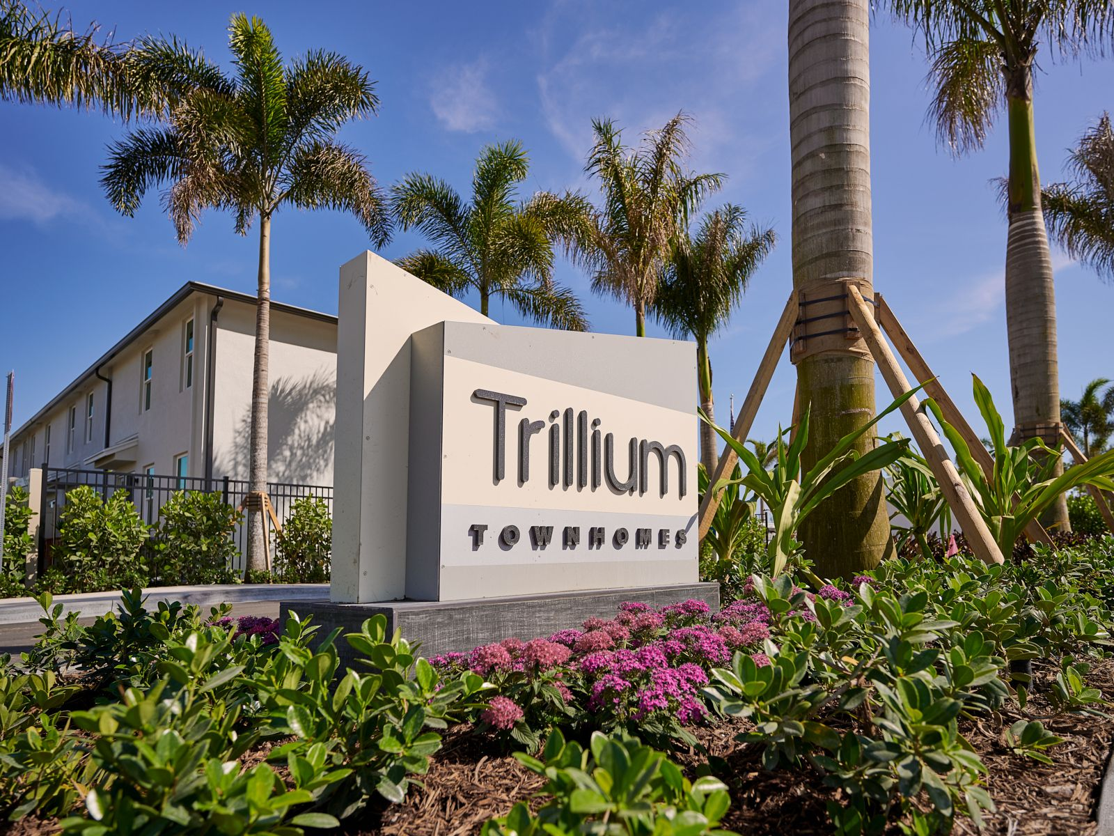 Welcome Home to Trillium