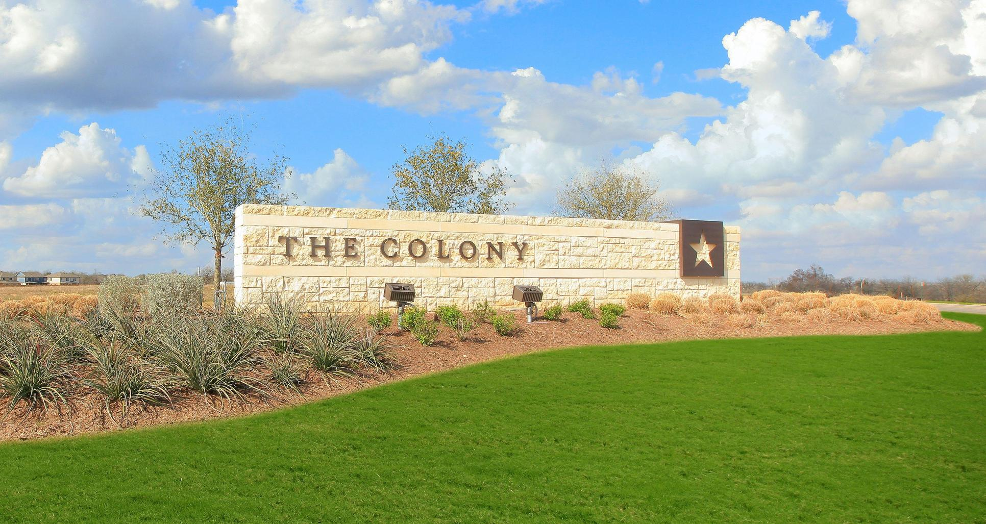 The Colony,78602