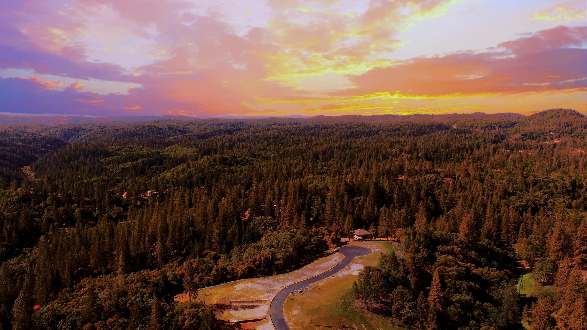 Sierra Oaks