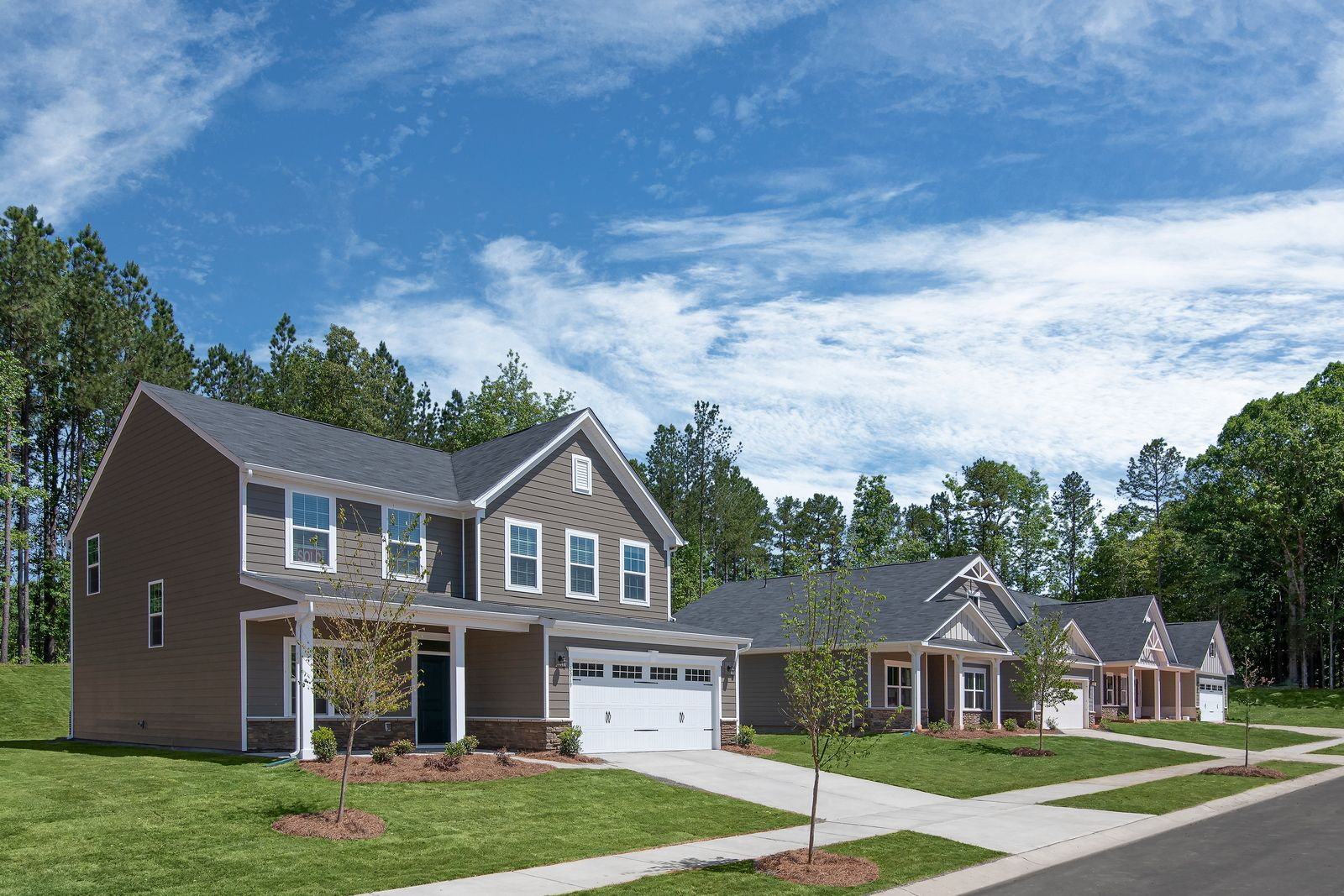 Huntersville Community with Spacious, Wooded Homesites:You can have it all at Chapel Grove... space between neighbors, a home that backs to trees, walking trails, and a convenient location.Schedule a visit!