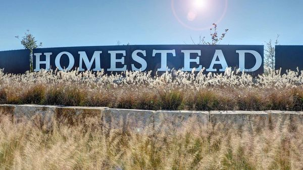 Homestead 65',78108