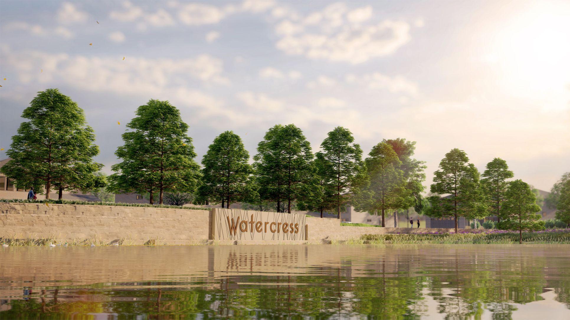 Watercress 65',76052