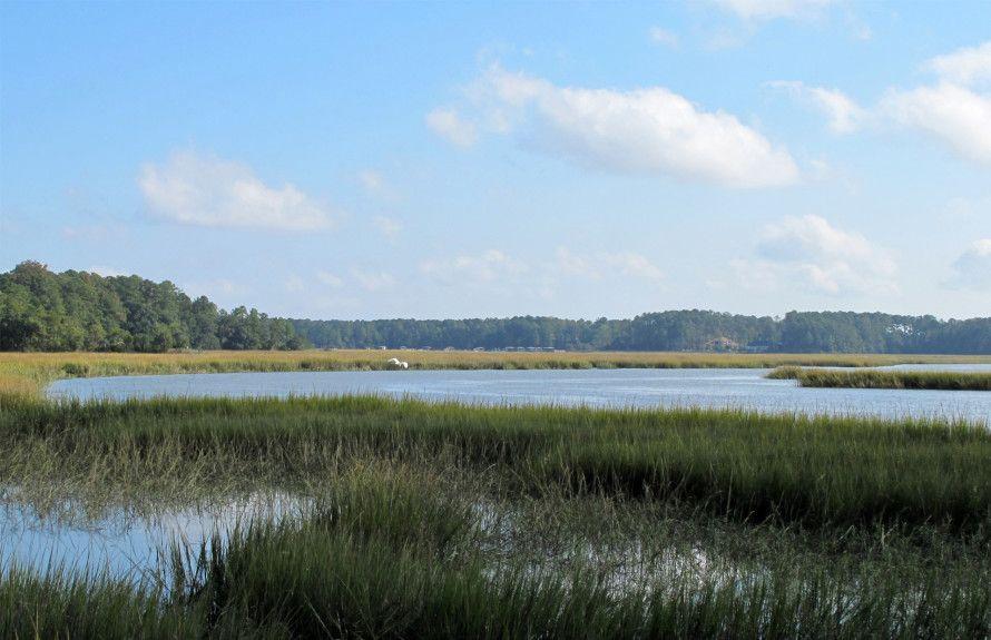 Marshfront View
