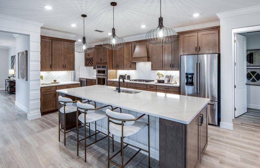 Renown:Designer Kitchen featuring stainless steel appliances