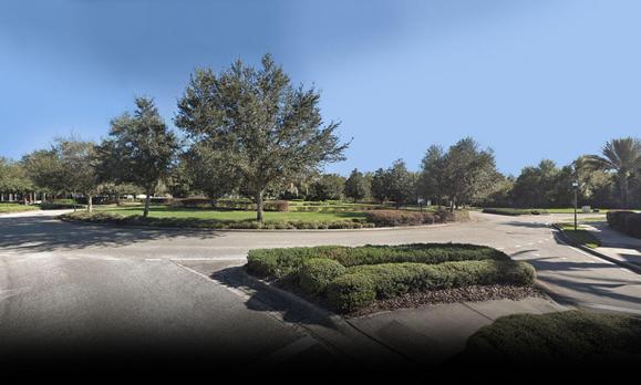 The Preserve at FishHawk Ranch,33569