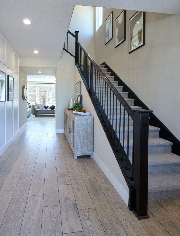 Entry-Residence 3