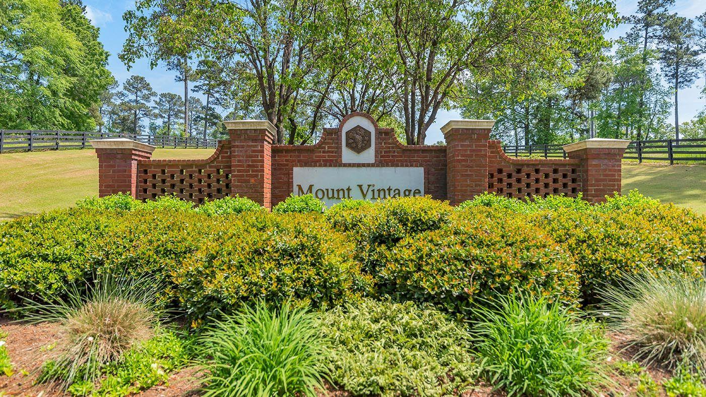 Mount Vintage,29860
