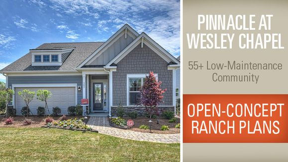 Pinnacle at Wesley Chapel,28110