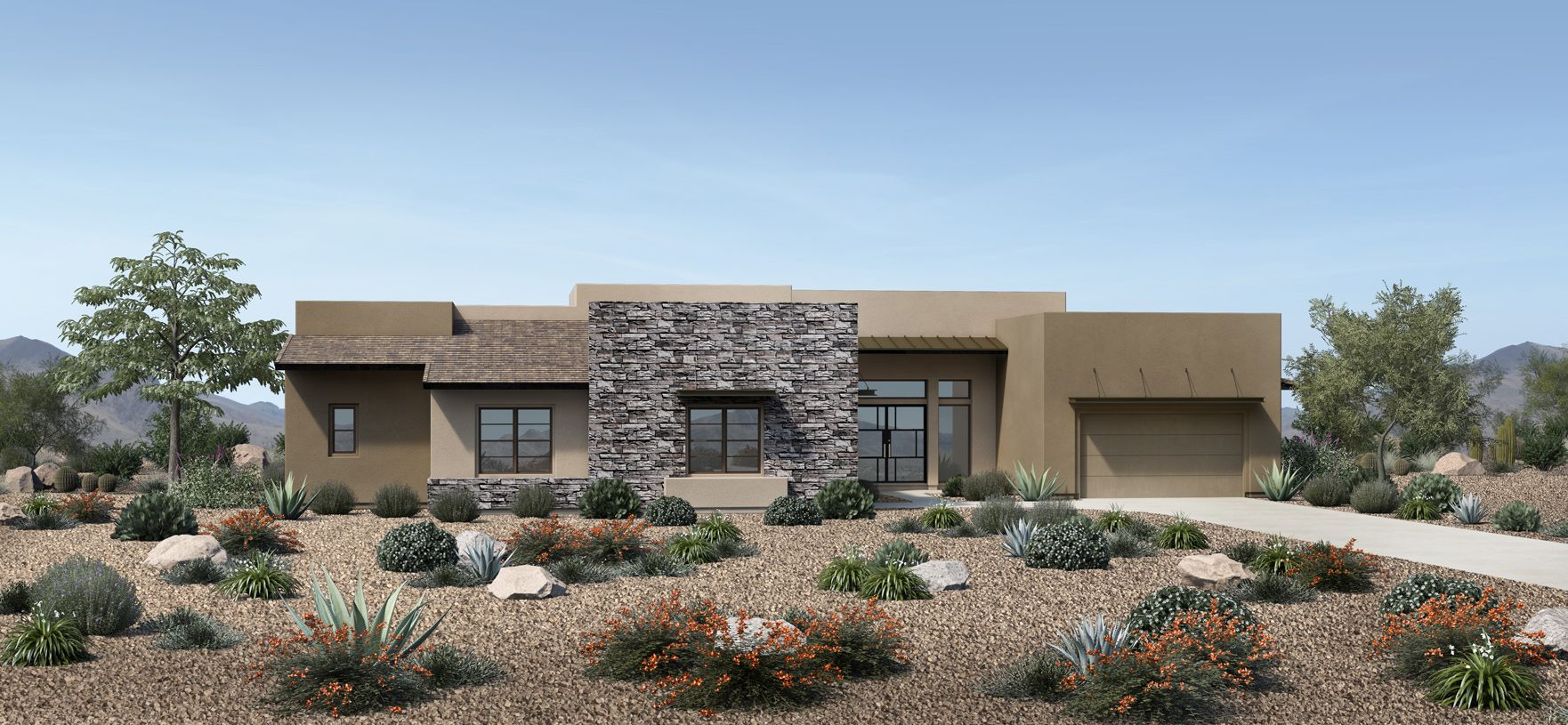 Elevation Image:Desert Contemporary