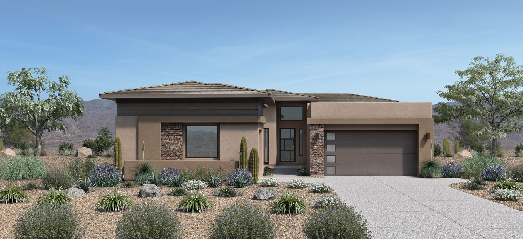 Elevation Image:Desert Contemporary