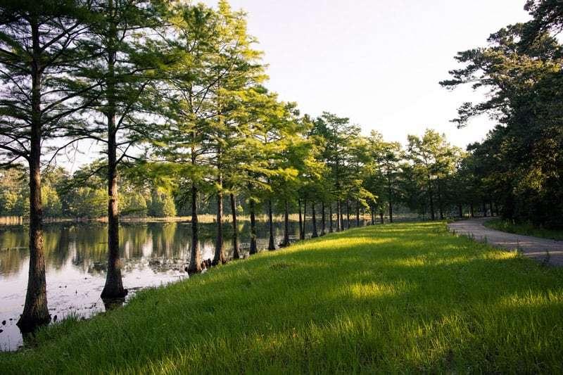 Grand Central Park   Lake