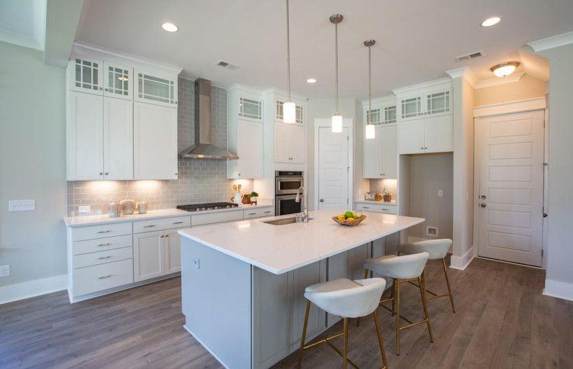 Thompson:Model Representation - Beautiful Kitchen